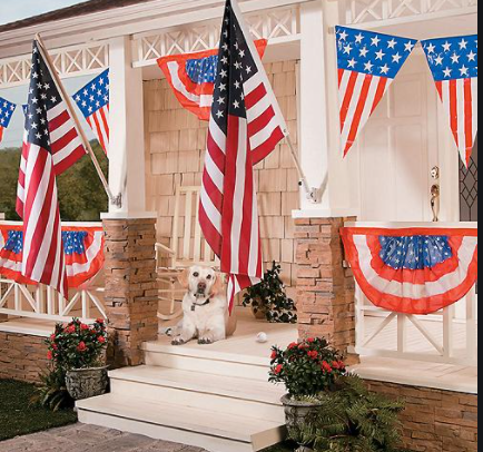Veterans Day Party ideas for school, presentation, and Home