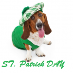 ST. Patrick DAY 2022 images